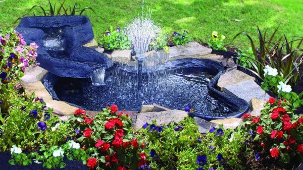 backyard pond ideas & design