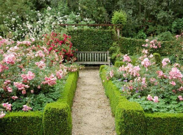 ways incorporate roses