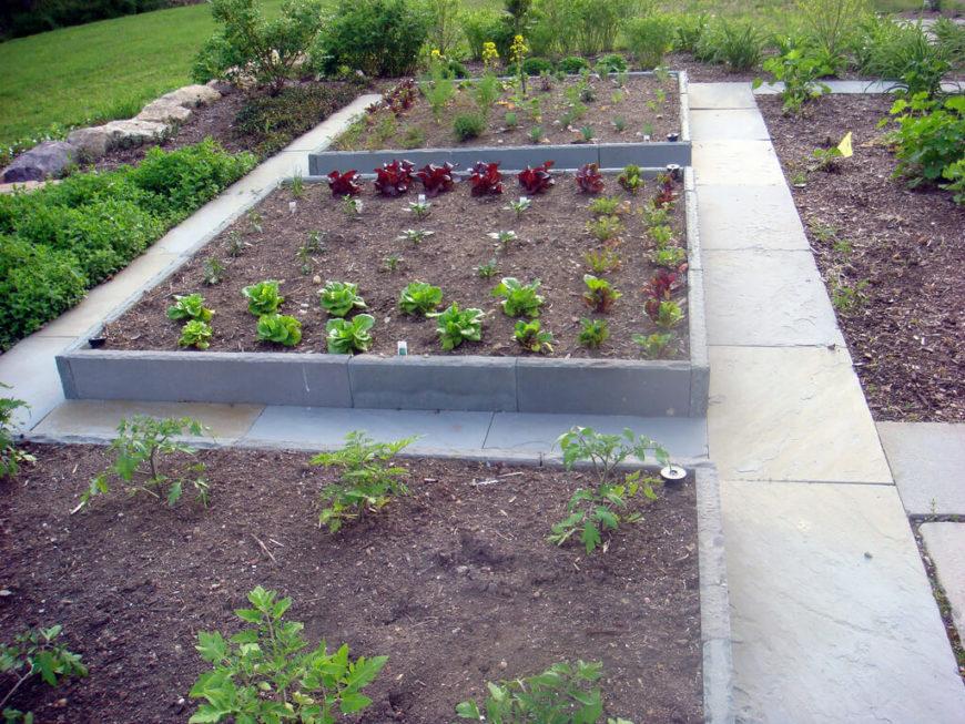 Diy Cheap Garden Raised Beds