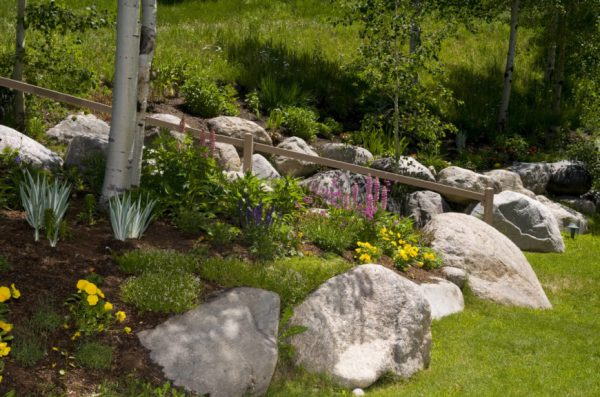 backyard rock garden ideas