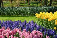 47 Gorgeous Perennial Garden Ideas - Home Stratosphere