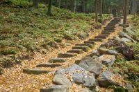 37 Magnificent Backyard Stone Step Ideas