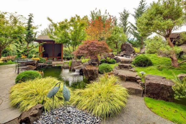 remarkable backyard grass ideas