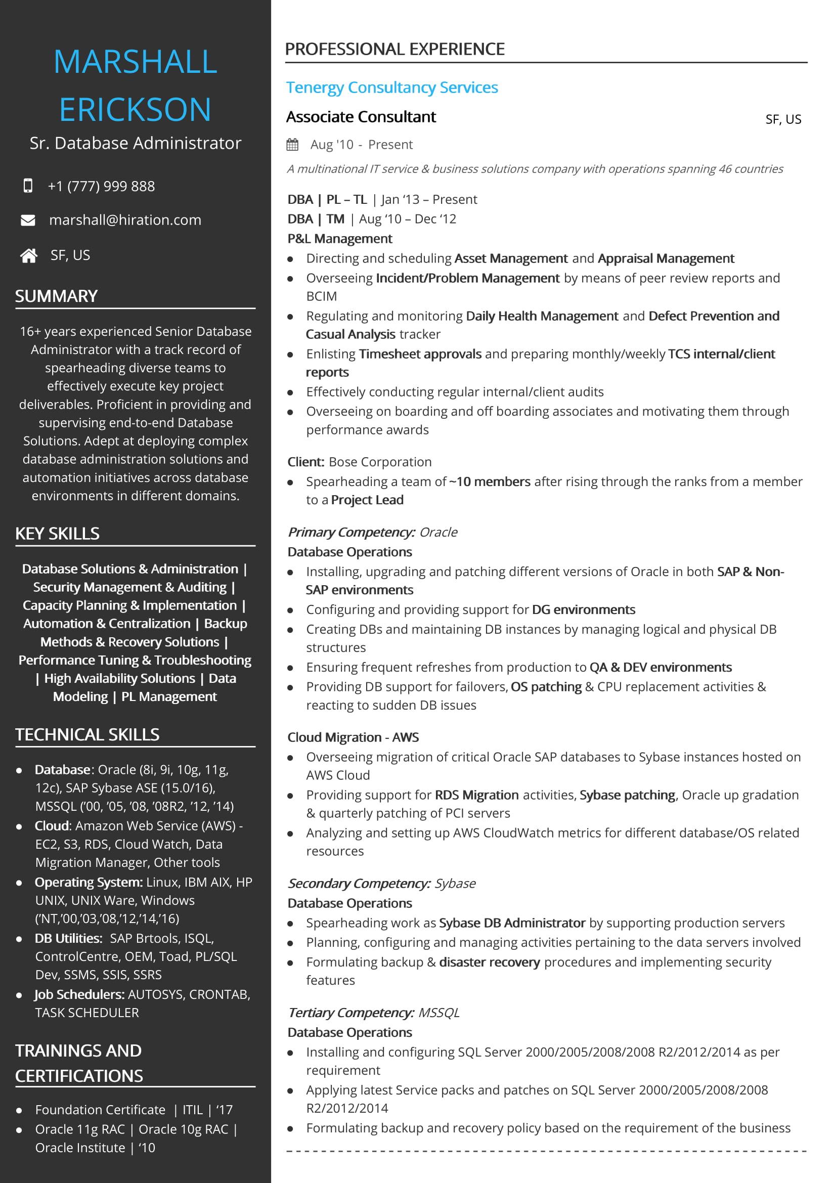senior technology project manager resume sample