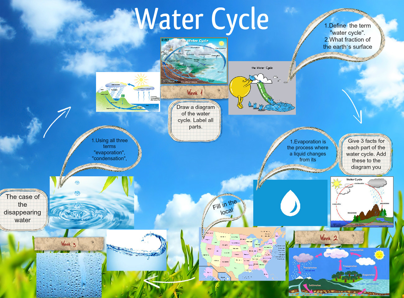 hight resolution of water cycle bug cycle life l fe life lyfecicle glogster edu interactive multimedia posters