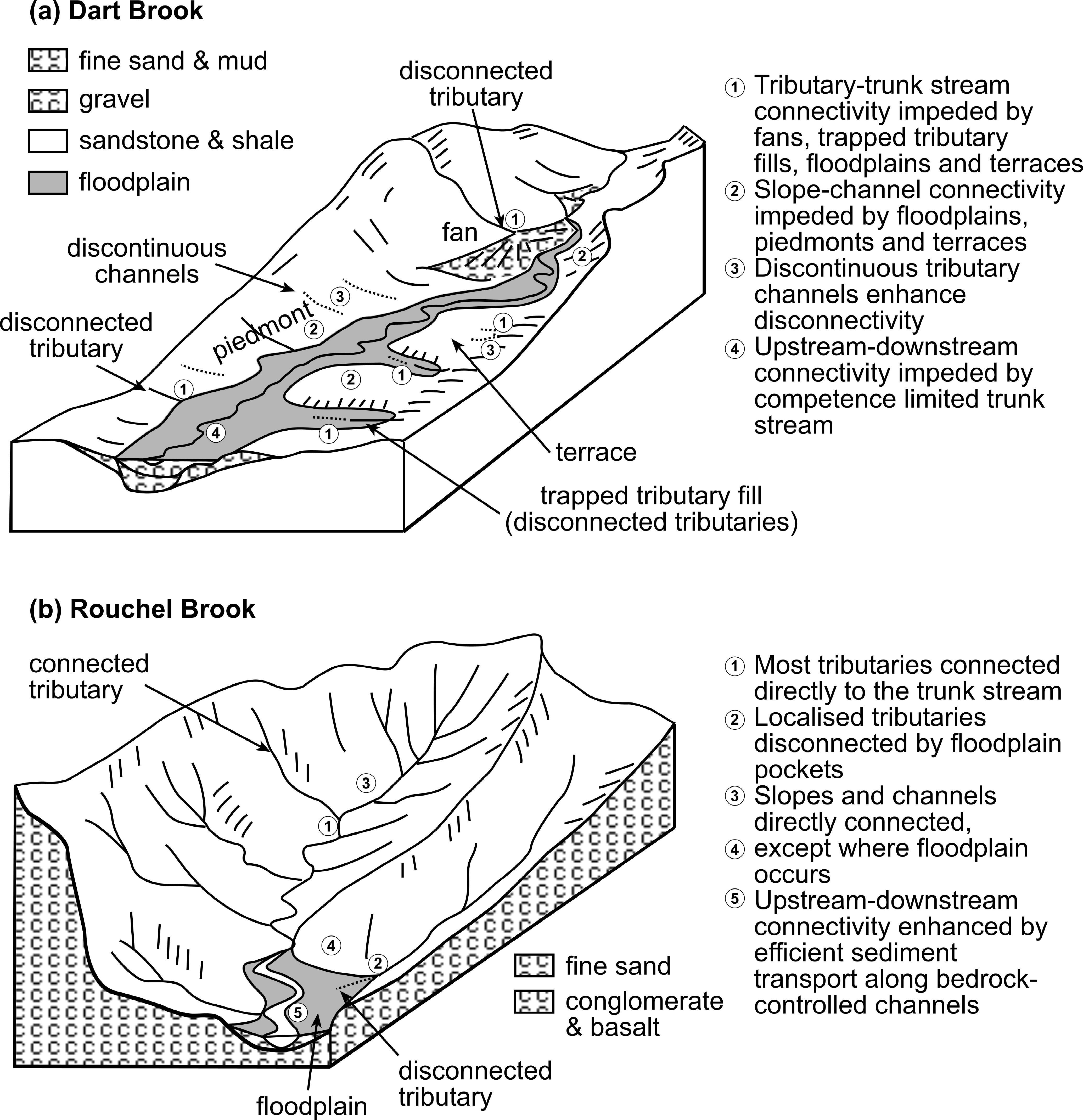 Figure 5 Schematic Model