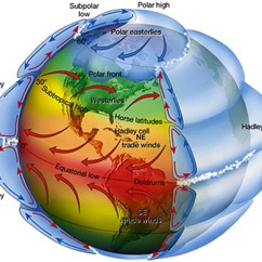 Global Wind Patterns Diagram Human Digestive System Unlabeled 1b Of Hurricanes Pattern Effects 3 D Hadley Cell