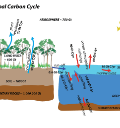 images global carbon cycle [ 3208 x 1949 Pixel ]