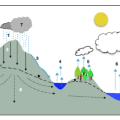 Water Cycle Diagram With Questions Ethylene Phase Unit 1 Hydrologic Image