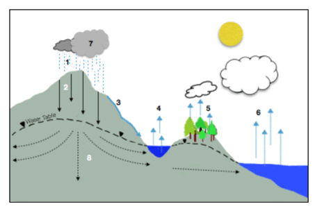 water cycle diagram with questions 2004 chevy silverado stereo wiring unit 1 hydrologic image