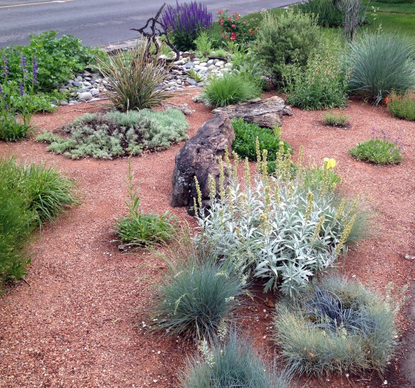 xeric landscaping