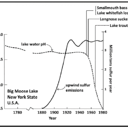 small resolution of acid rain diagram pathway