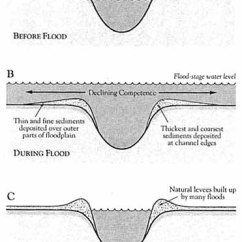 Levee Cross Section Diagram Human Leg Label The Parts Understanding Katrina Construction Of Natural Levees