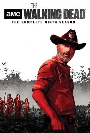 Nonton Film The Walking Dead Season 9 : nonton, walking, season, Walking, Dead:, Season, Where, Watch, Streaming, Online, Flicks.co.nz