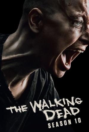 The Walking Dead Season 9 Episode 11 Streaming : walking, season, episode, streaming, Walking, Dead:, Season, Where, Watch, Streaming, Online, Flicks.com.au