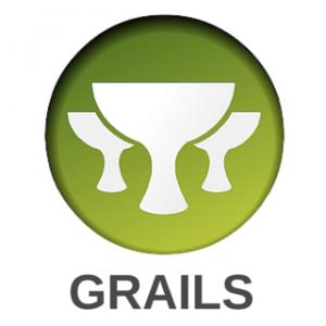 Image Depicting Grails Web Application Framework