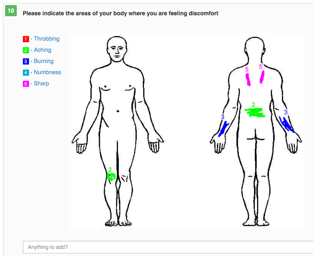 hight resolution of body diagram image