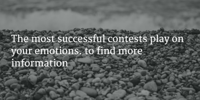 , Why Contests Work (and How to Run One), Referrals Support and Blog
