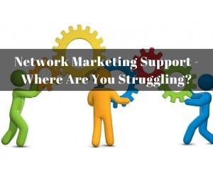 Network Marketing Support - Where Are You Struggling?