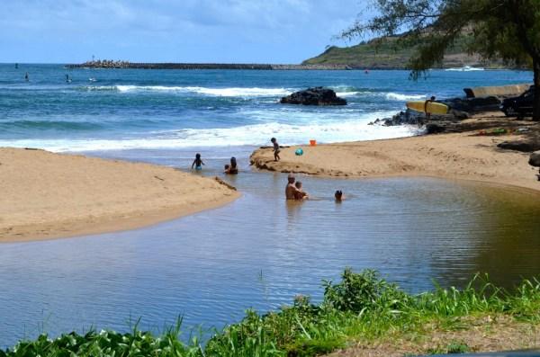 Hawaii. Shouldn T Warning Public Of Dangerous Bacteria Levels Lurking