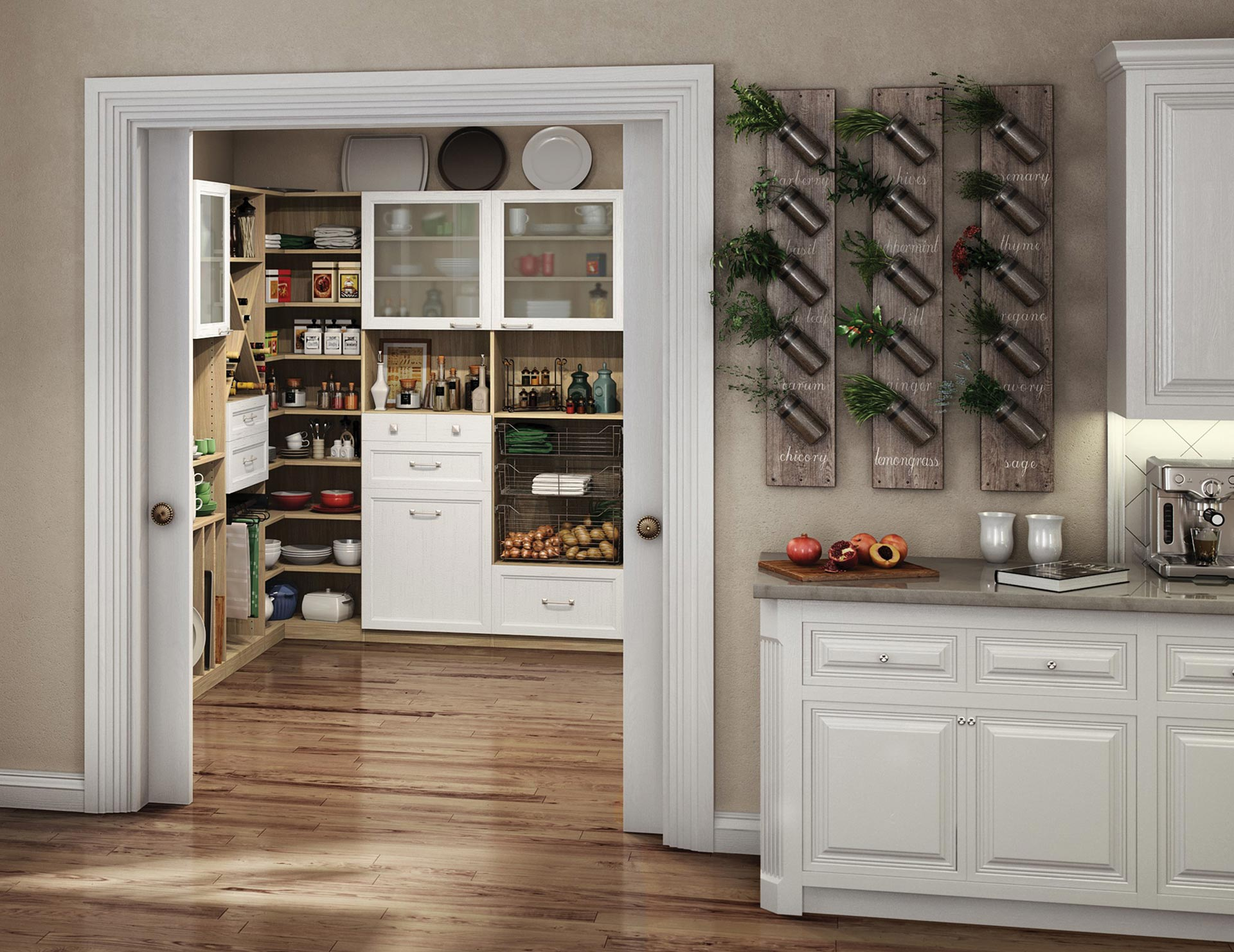 Kitchen Pantry Cabinets  Kitchen Organization Ideas