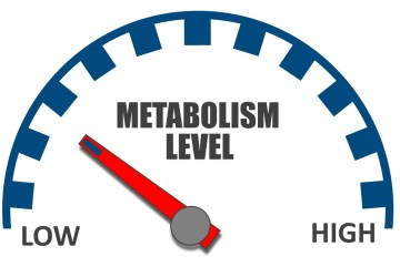 5 Cara meningkatkan metabolisme