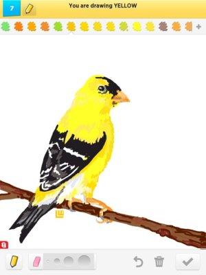 drawings yellow draw something rating