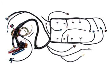 Ls1 4l80e Wiring Harness : 24 Wiring Diagram Images