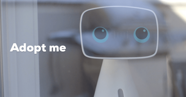 Win Your Own Personal Robot