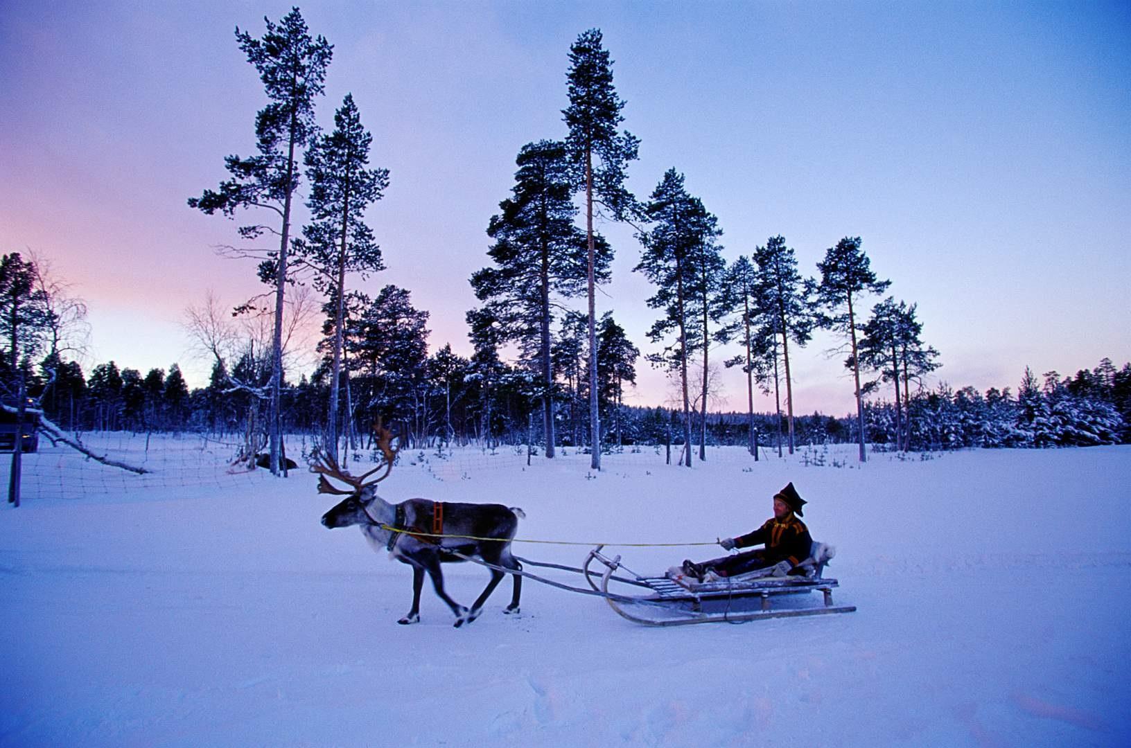 Summer In Lapland Sweden