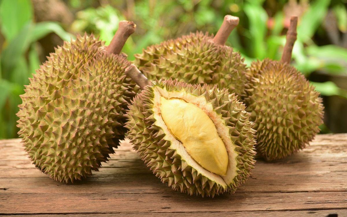 the 9 weirdest fruits