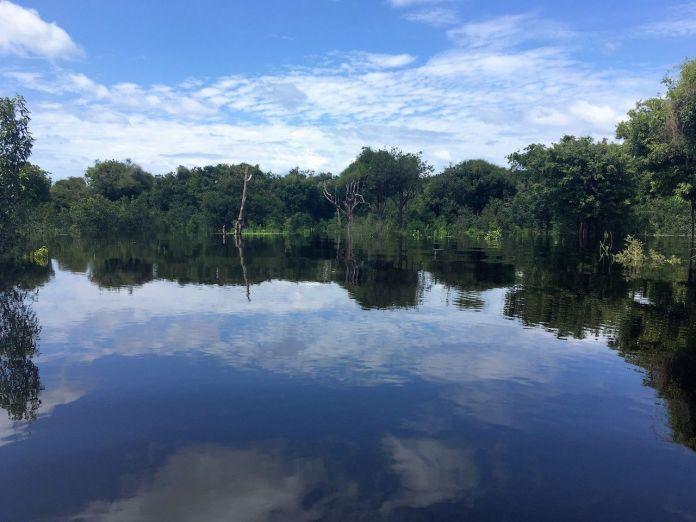 Novo Airao reflection