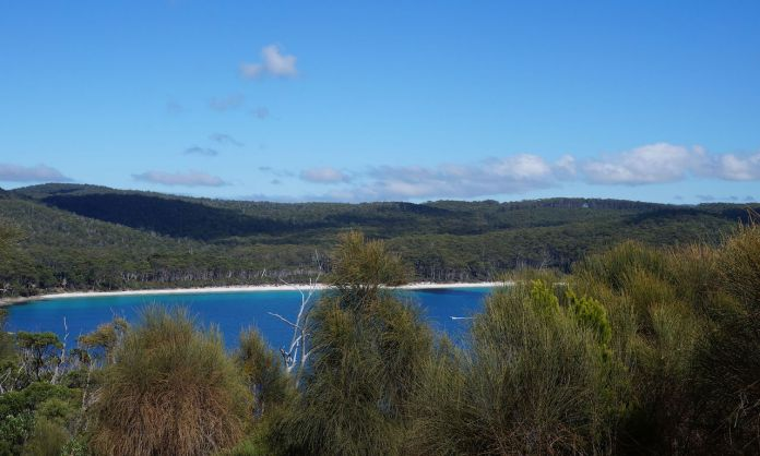 Elevated overview of Fortescue Bay beach and eucalypts forests