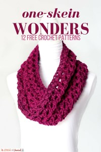 Free Crochet Patterns For One Skein ~ Dancox for