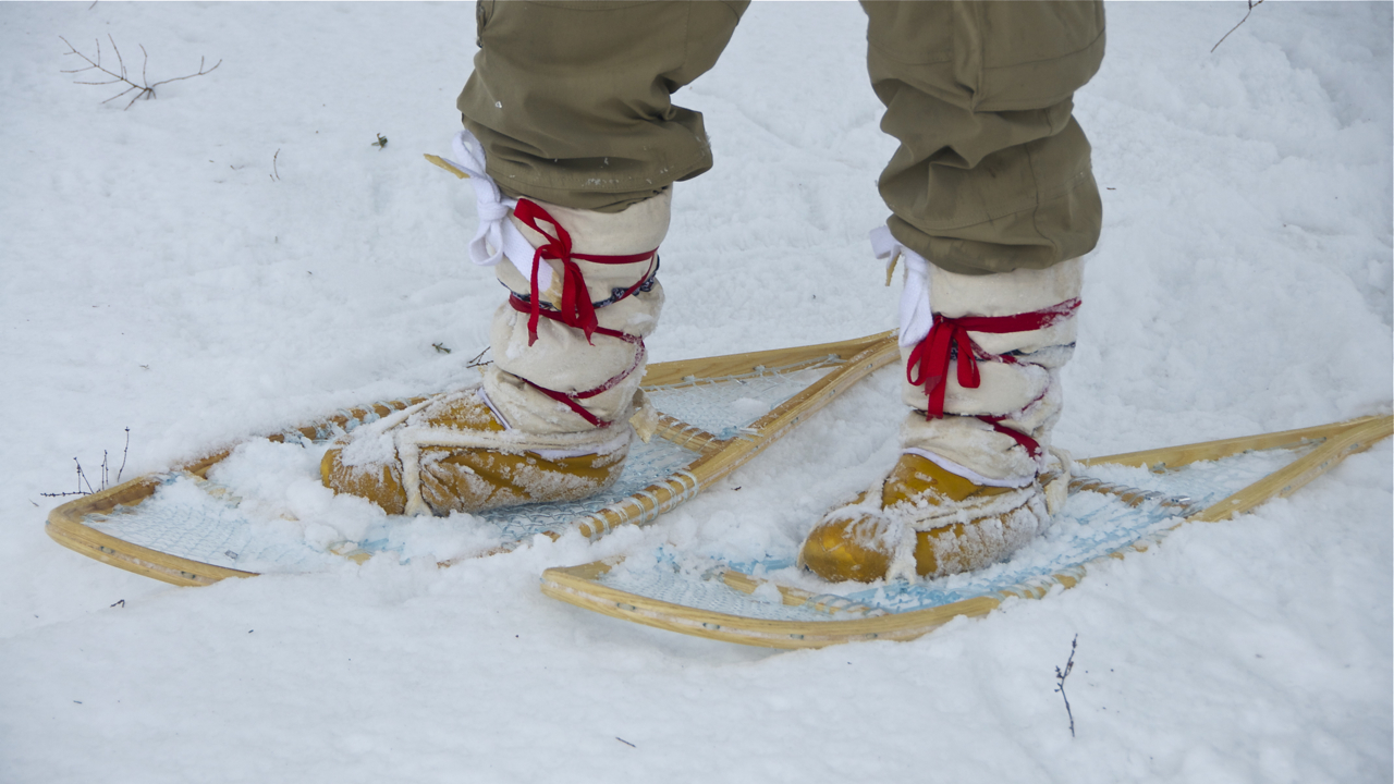 Traditional Snowshoes W Monoline Weave Lure Of The North