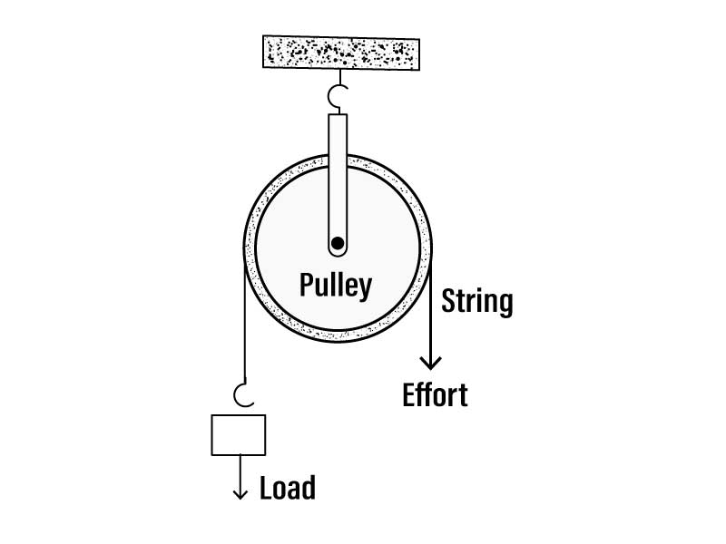 Q28 Draw a neat and labelled diagram showing a pulley