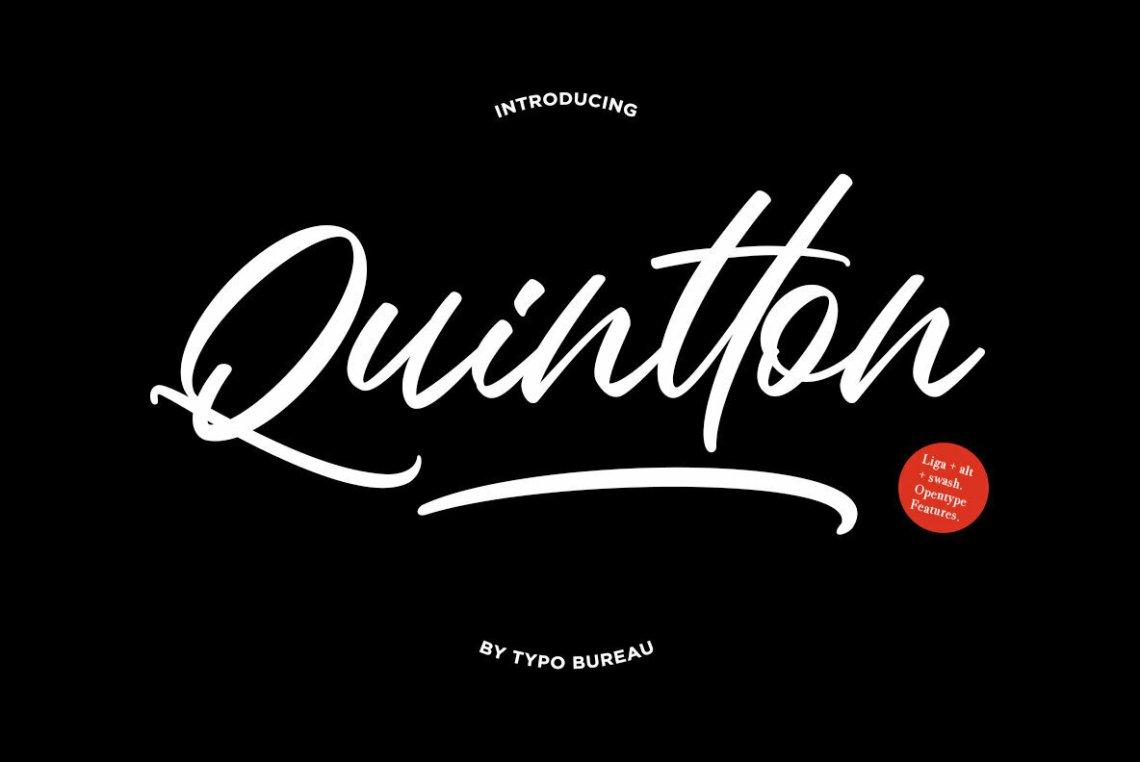 Download Quintton - Desktop Font & WebFont - YouWorkForThem