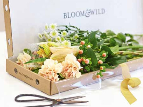 Bloom & Wild (Gran Bretagna).