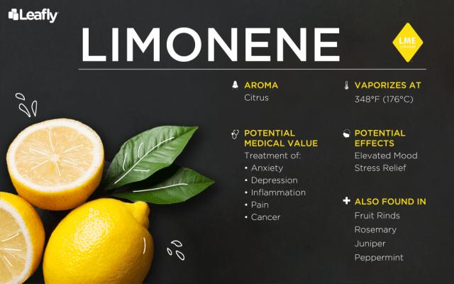 terpene weed limonene
