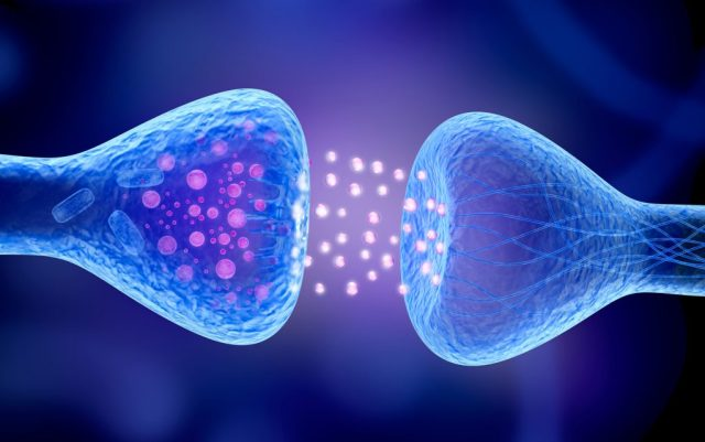 Active receptor isolated on blue.
