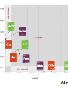 The three major chemotypes of cannabis graphed under leafly   new thc and or also how to help consumers understand amount cbd in their rh