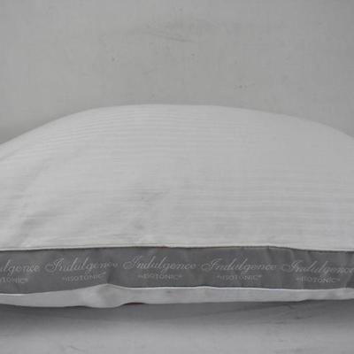 indulgence by isotonic pillow standard warehouse dirt needs cleaning estatesales org