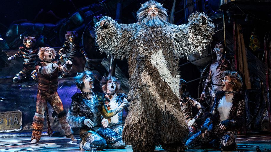 cast of CATS on stage