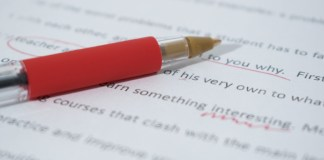 Essay Writing in UPSC Mains