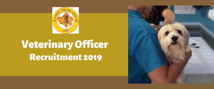 RPSC Veterinary Officer Recruitment Online Form 2019