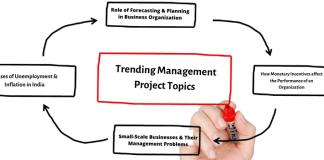 Management Project Topics