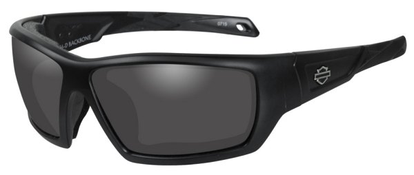 HarleyDavidson Men39s Backbone Sunglasses Gray Lens