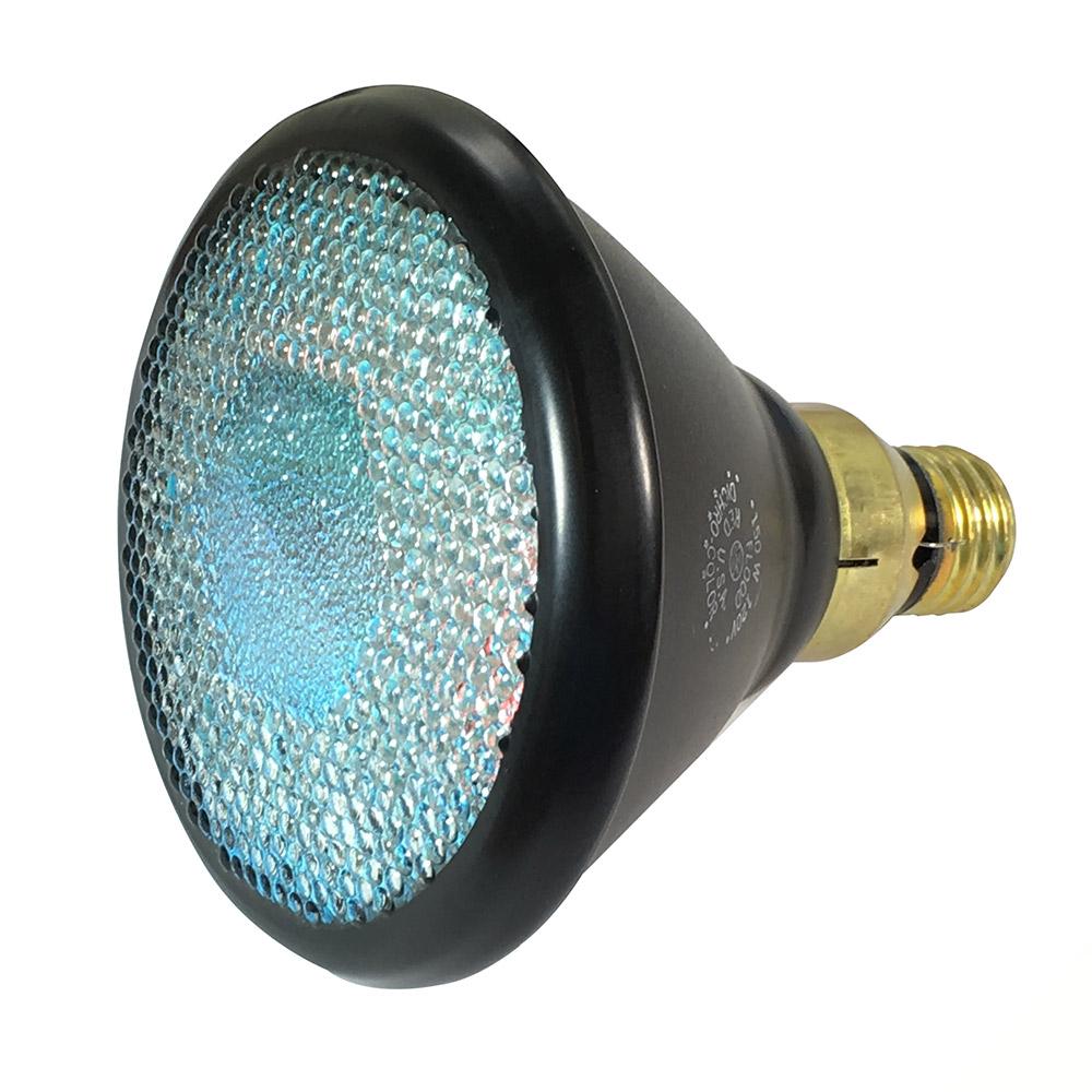 Colored Flood Light Bulbs