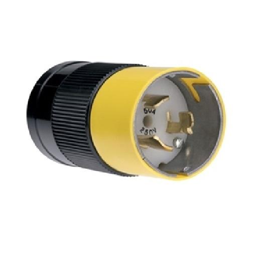 Standard Plug Wiring