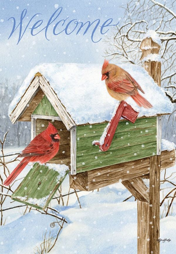 cardinal mailbox winter garden